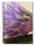 Edible Beauty Spiral Notebook