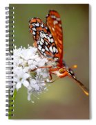 Edith's Checkerspot Five Spiral Notebook