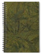 Edition 1 Kelp Spiral Notebook