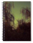 Eery Park Spiral Notebook