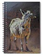 Eeyore Spiral Notebook