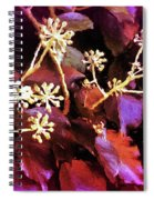 Efeu Ivy Vines Pink Spiral Notebook
