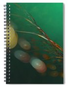 Egg Clutch  Diving The Reef Series Spiral Notebook