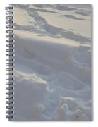 Eggwhite Snow Spiral Notebook