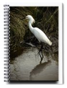 Egret 2 Spiral Notebook