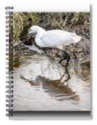 Egret 3 Spiral Notebook