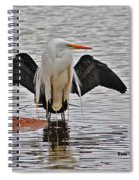 Egret And Cormorant Wings Spiral Notebook