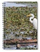 Egret And Turtles Spiral Notebook