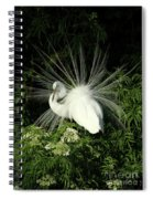 Egret Fan Dancer Spiral Notebook