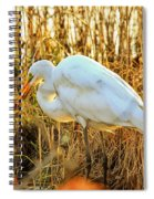 Egret Fishing In Sunset At Forsythe National Wildlife Refuge Spiral Notebook