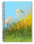 Egret In The Lake Shallows Spiral Notebook