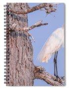 Egret In Tree Spiral Notebook