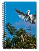 Egret Landing Spiral Notebook