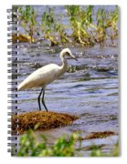 Egret On A Rock Spiral Notebook
