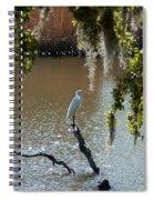 Egret On Stump Spiral Notebook