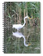 Egret On The Hunt Spiral Notebook