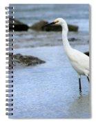 Egret Patrolling Spiral Notebook