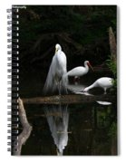 Egret Reflection Spiral Notebook