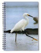 Egret Step Spiral Notebook