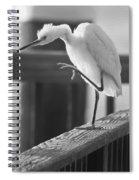 Egret Tai Chi Spiral Notebook