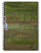 Egrets In A Field Spiral Notebook