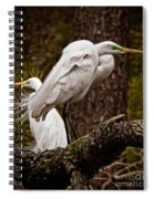Egrets On A Branch Spiral Notebook