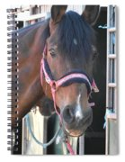 Egua Bailarina Spiral Notebook