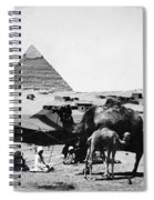 Egypt: Camel & Baby, C1899 Spiral Notebook