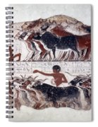 Egypt: Tomb Painting Spiral Notebook