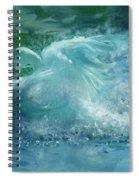 Ein Schwan - The Swan Spiral Notebook