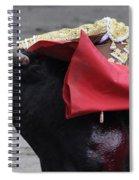 El Cid Spiral Notebook