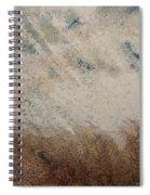 El Genio Curioso 10 Spiral Notebook