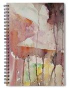 El Genio Curioso 7 Spiral Notebook