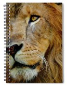 El Rey Spiral Notebook