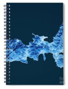 Elba Island Topographic Map Blue Color Top View Spiral Notebook
