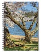 Elder Cherry Tree Spiral Notebook