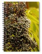 Elderberry Spiral Notebook