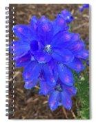Electric Blue Flower Spiral Notebook