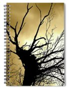 Electric Tree Black And Gold Spiral Notebook