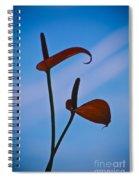 Elegance-1 Spiral Notebook