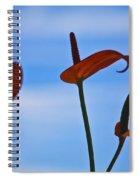 Elegance-2 Spiral Notebook
