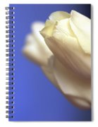 Elegance Spiral Notebook