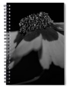 Elegance In Black And White Spiral Notebook