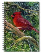 Elegance In Red Spiral Notebook