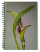 Elegant Calla Buds Spiral Notebook