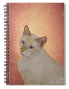 Elegant Flame Point Siamese Spiral Notebook