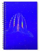 Elegant Jellies Spiral Notebook
