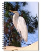 Elegant White Crane Spiral Notebook