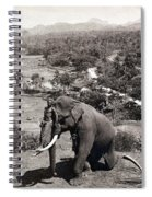 Elephant And Keeper, 1902 Spiral Notebook