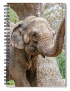 Elephant And Tree Trunk Spiral Notebook